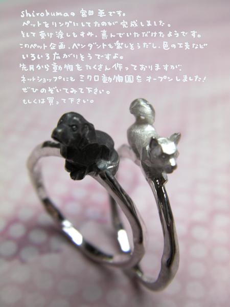 ペット犬リングpet dog ring silver