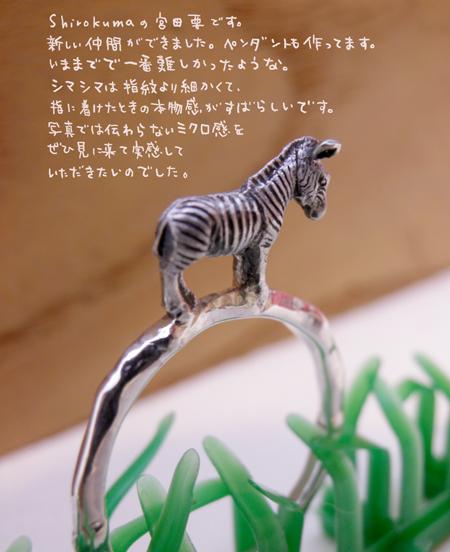 福岡シマウマ動物指輪