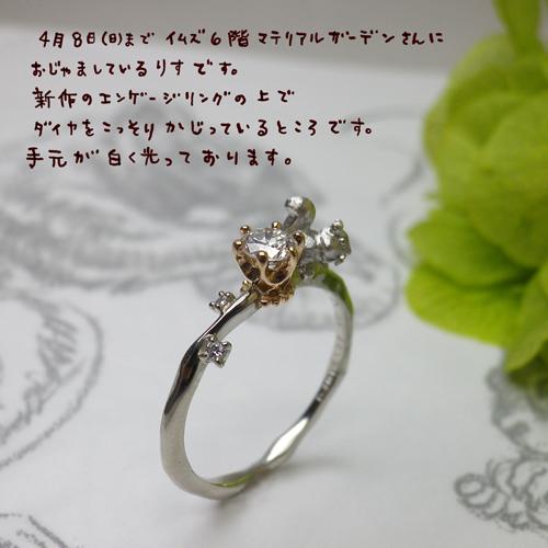 リス婚約指輪