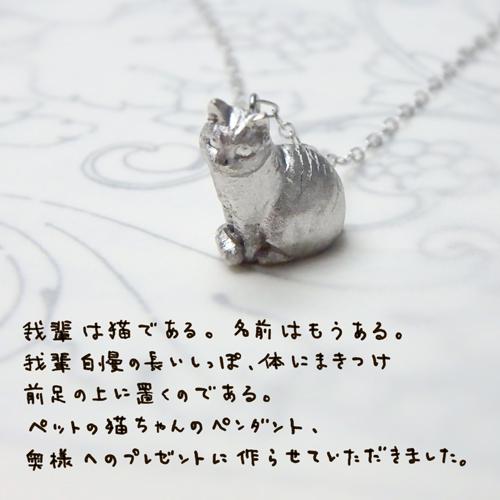 テトちゃん