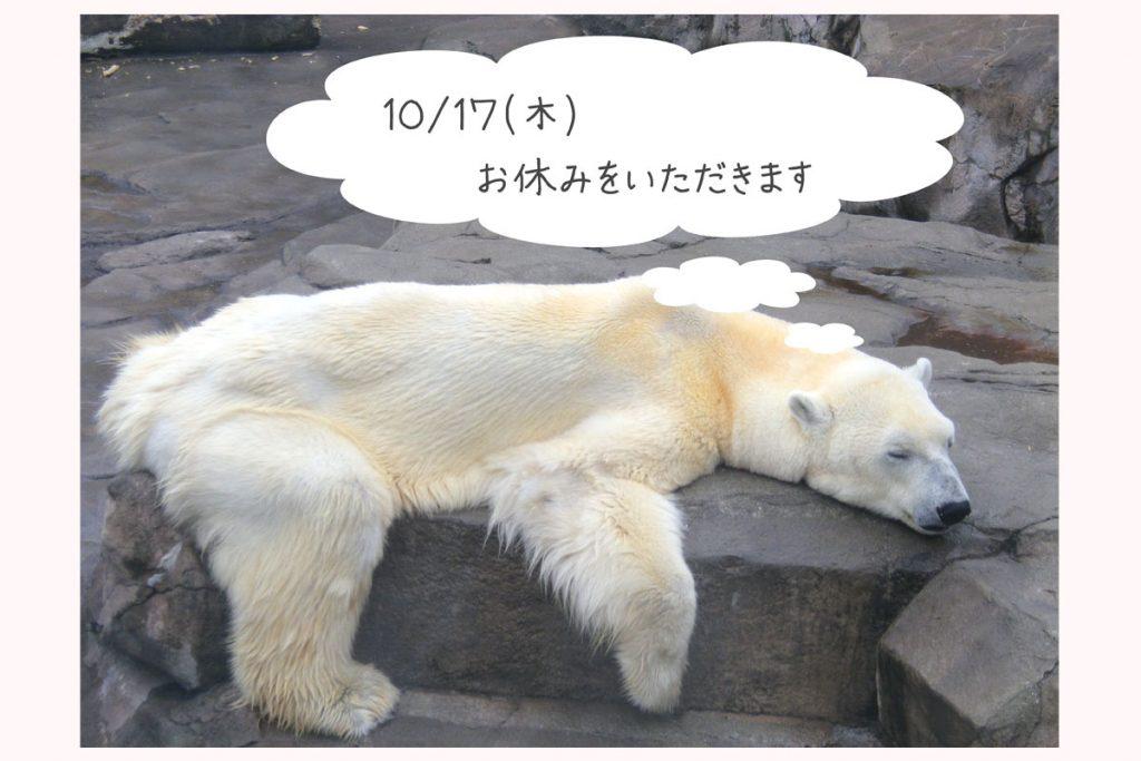 しろくまが寝ている